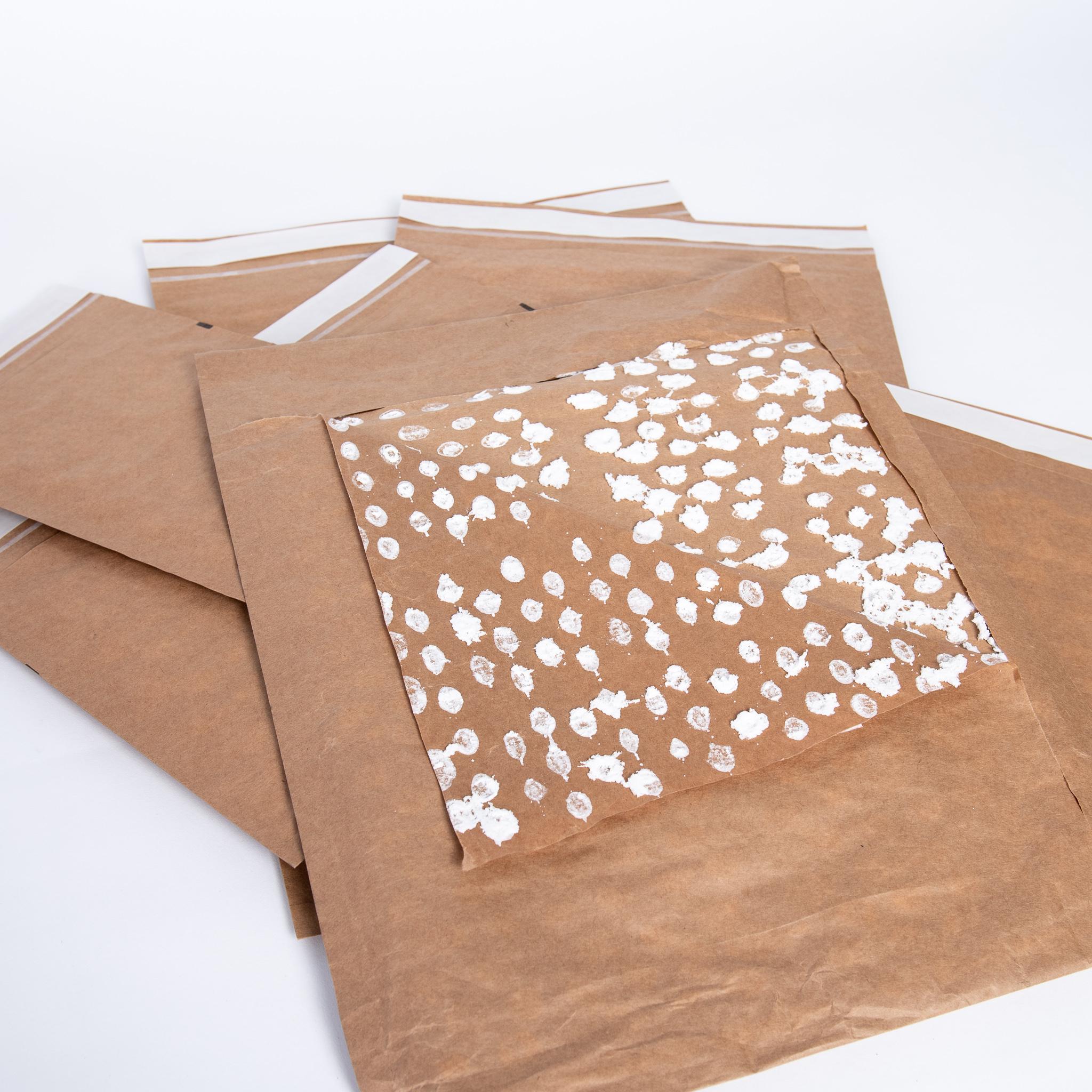Padded Paper Mailer Envelopes